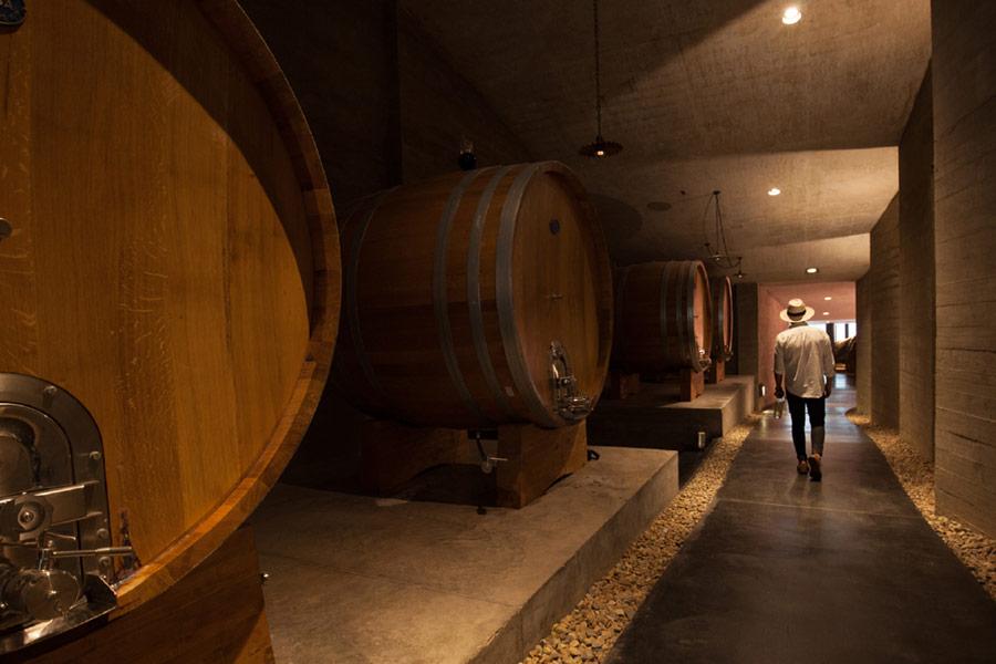 bodega garzon wine barrels