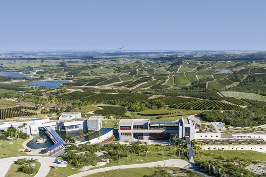 Bodega Garzon Winery
